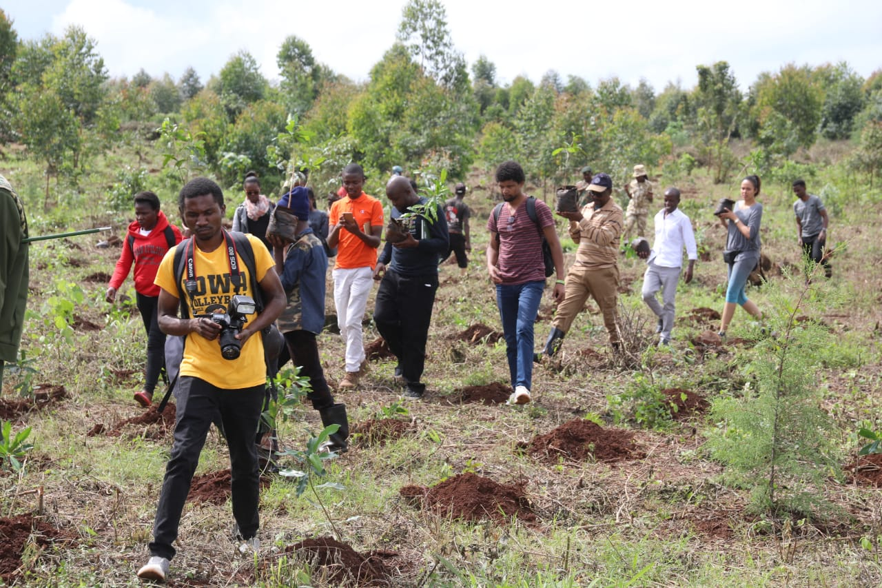 Kensja and Partners Join in Tree Planting Event